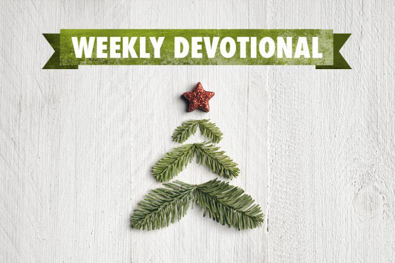 <span>Weekly Devotional: This Christmas Season</span>