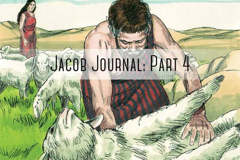 "sheapard helping sheep with ""jacob journal part 4"""