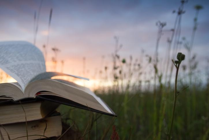 A stack of books sitting outside at sunset